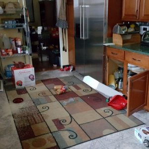 "November 30, 2018 - A 7.0 magnatude earthquake centered about 10 miles from the house ""remodeled"" the kitchen for me >.<    Note the range slid out..."
