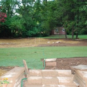 graded and sodded back yard