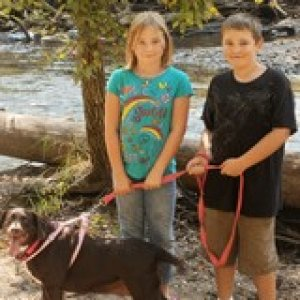 William, Gracie, and Molly Brown. Molly is a Chocolate Lab, Beagle mix. Best old dog I've ever owned.