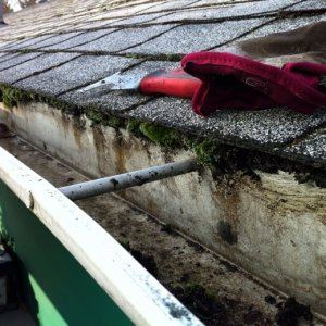 Oh yeah the bottom shingles had moss too.