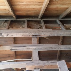 Jack joists and rafter on the north side of house with stress split on 2X4