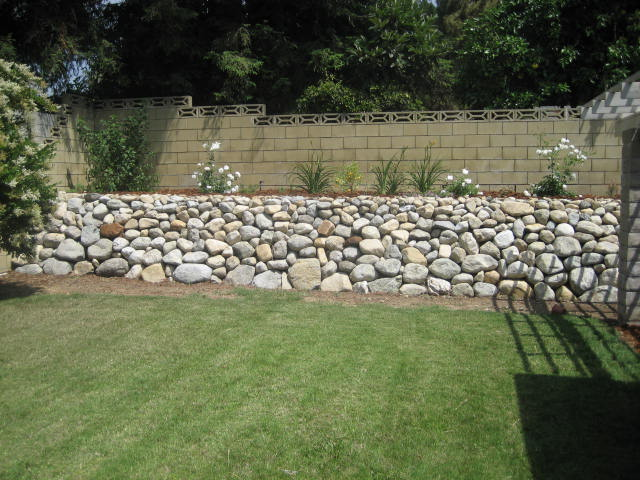 backyard free stacked rock wall - no mortar- Local river rock- This type of rock wall was used to control flood waters in the citrus groves that dominated the inland empire area from the late 1800's until the 1960's. these walls rely on gravity and the method of placing the rocks for their lasting strength. There is no hydrostatic pressure behind the wall as water can flow through. Landscape fabric and rubble is used to keep the backfill from coming through.