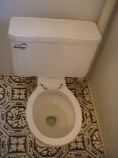 Case toilet