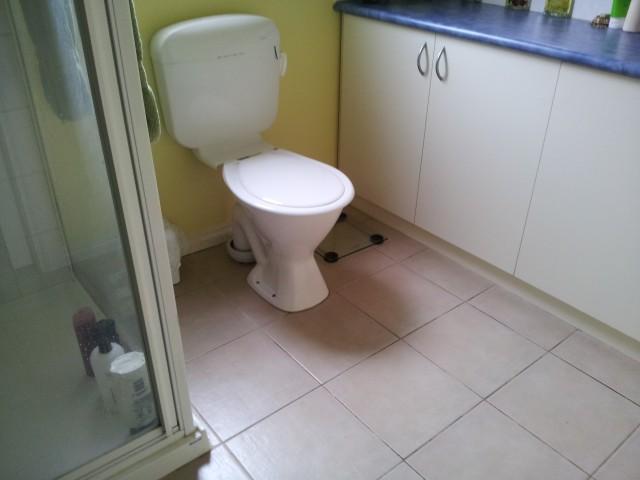 Ensuite pre flooring 2