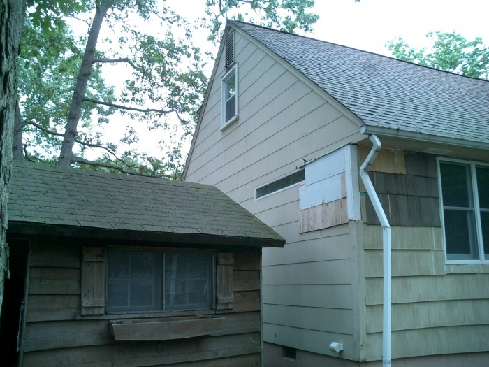 Shed side... Botched reshingle job that lead to ultimately reside the whole house...